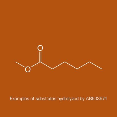 Example of substrates hydrolyzed by AB503574 | Methyl caproate