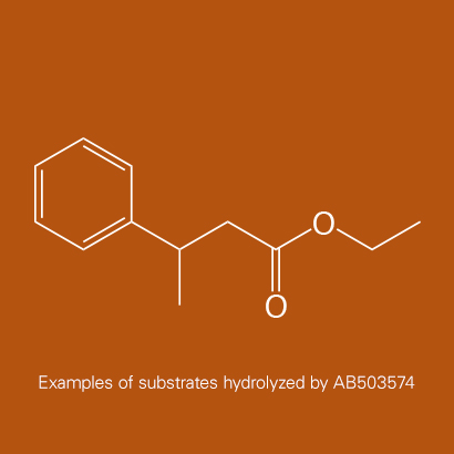 Example of substrates hydrolyzed by AB503574 | Ethyl trans-beta-methylcinnamate