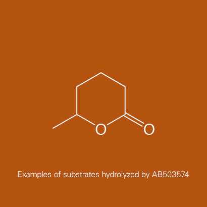 Example of substrates hydrolyzed by AB503574 | delta-Hexanolactone