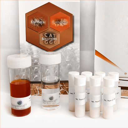 Esterase screening kit, bacterial, recombinant from E.Coli